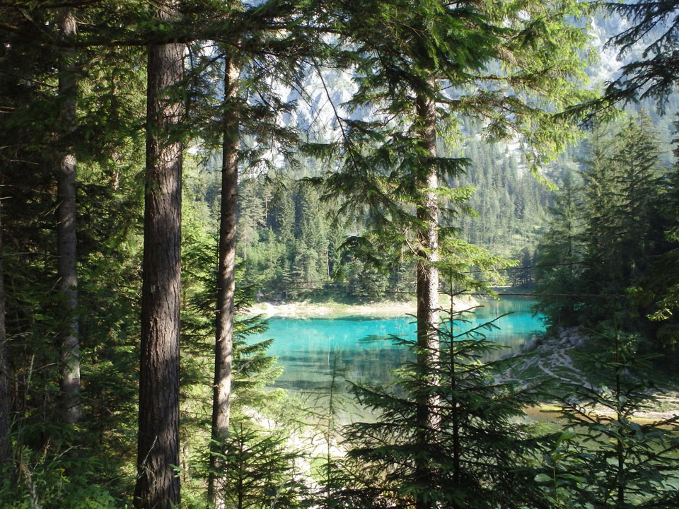 grüner see