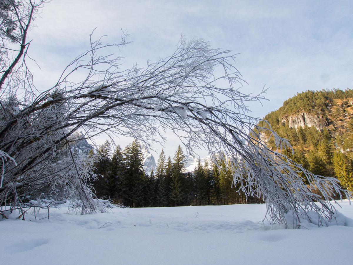 Schiederweiher Hinterstoder Winter