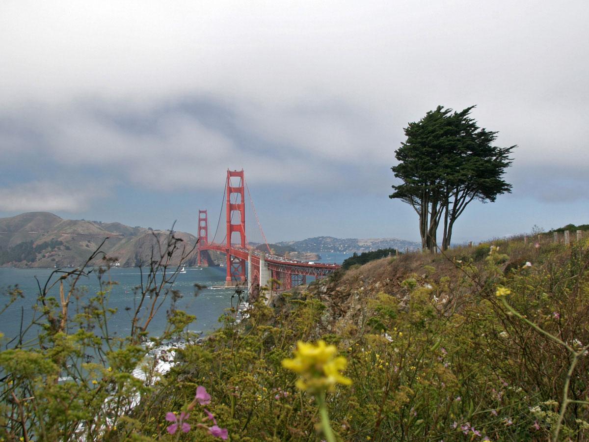 sanfrancisco goldengatebridge 3 - San Francisco