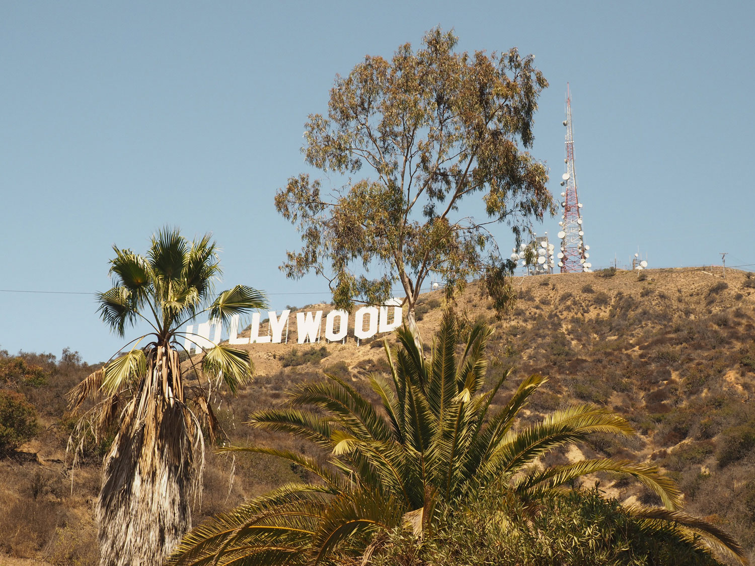 losangeles-hollywoodsign-(1)