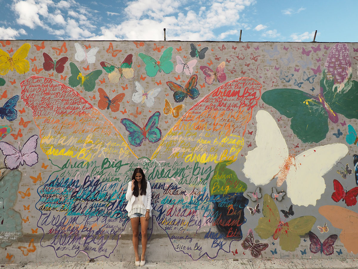 dreambig-butterfly-wall-losangeles