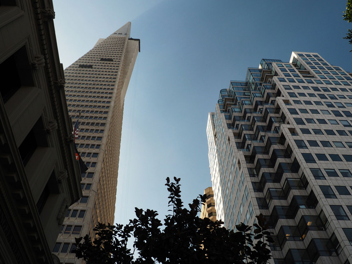 sanfrancisco-downtown (4)