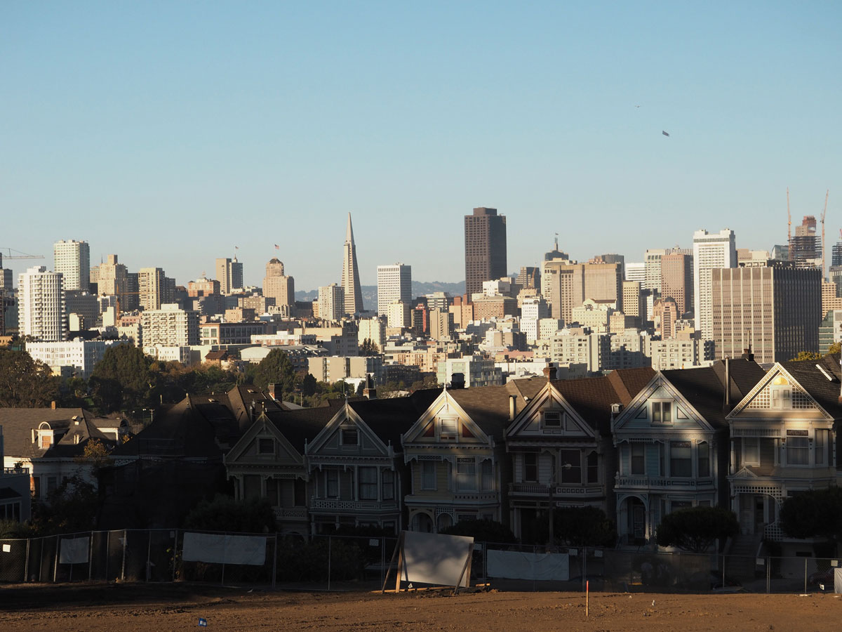 sanfrancisco-paintedladies