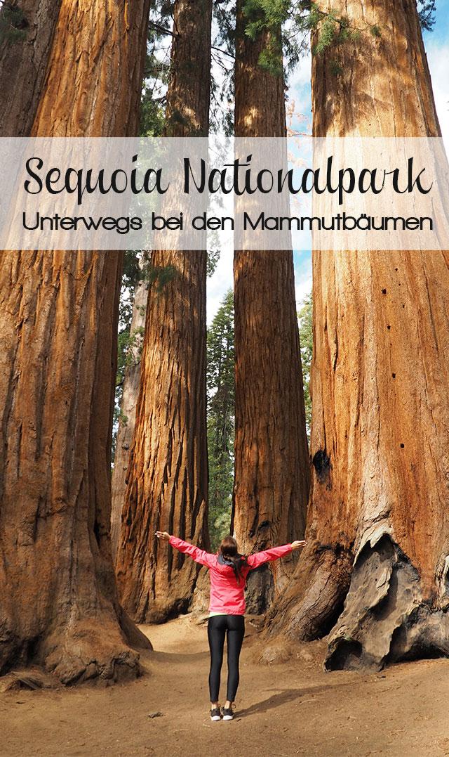 Sequoia Nationalpark Reisetipps