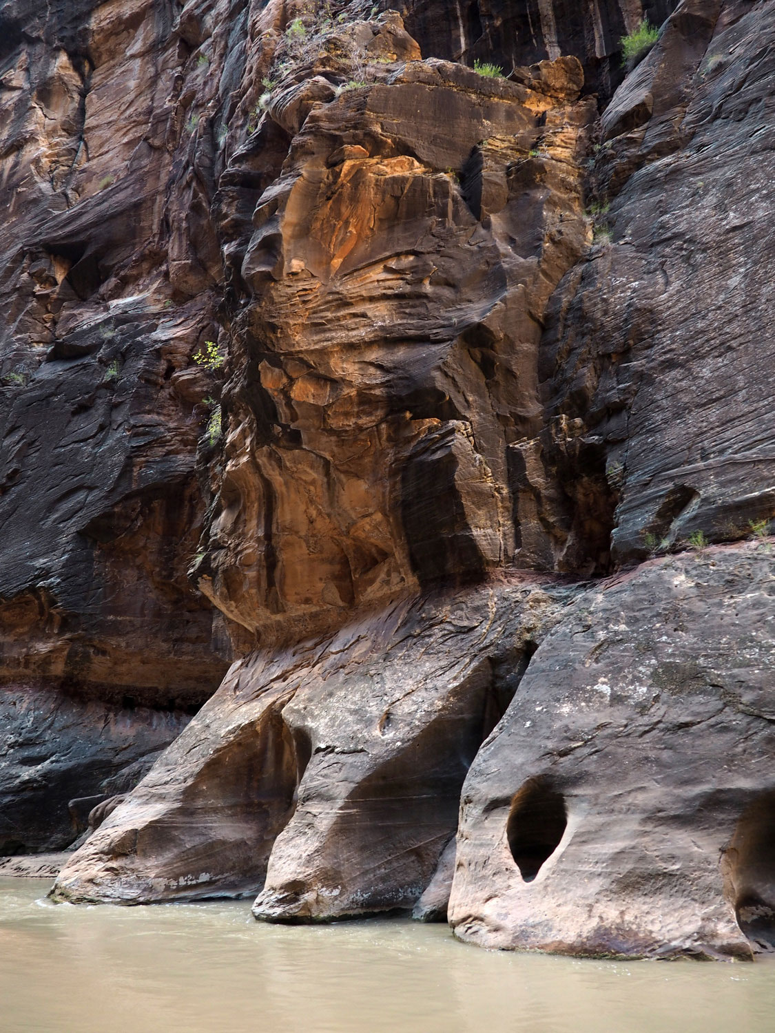the-narrows-zion-nationalpark (10)