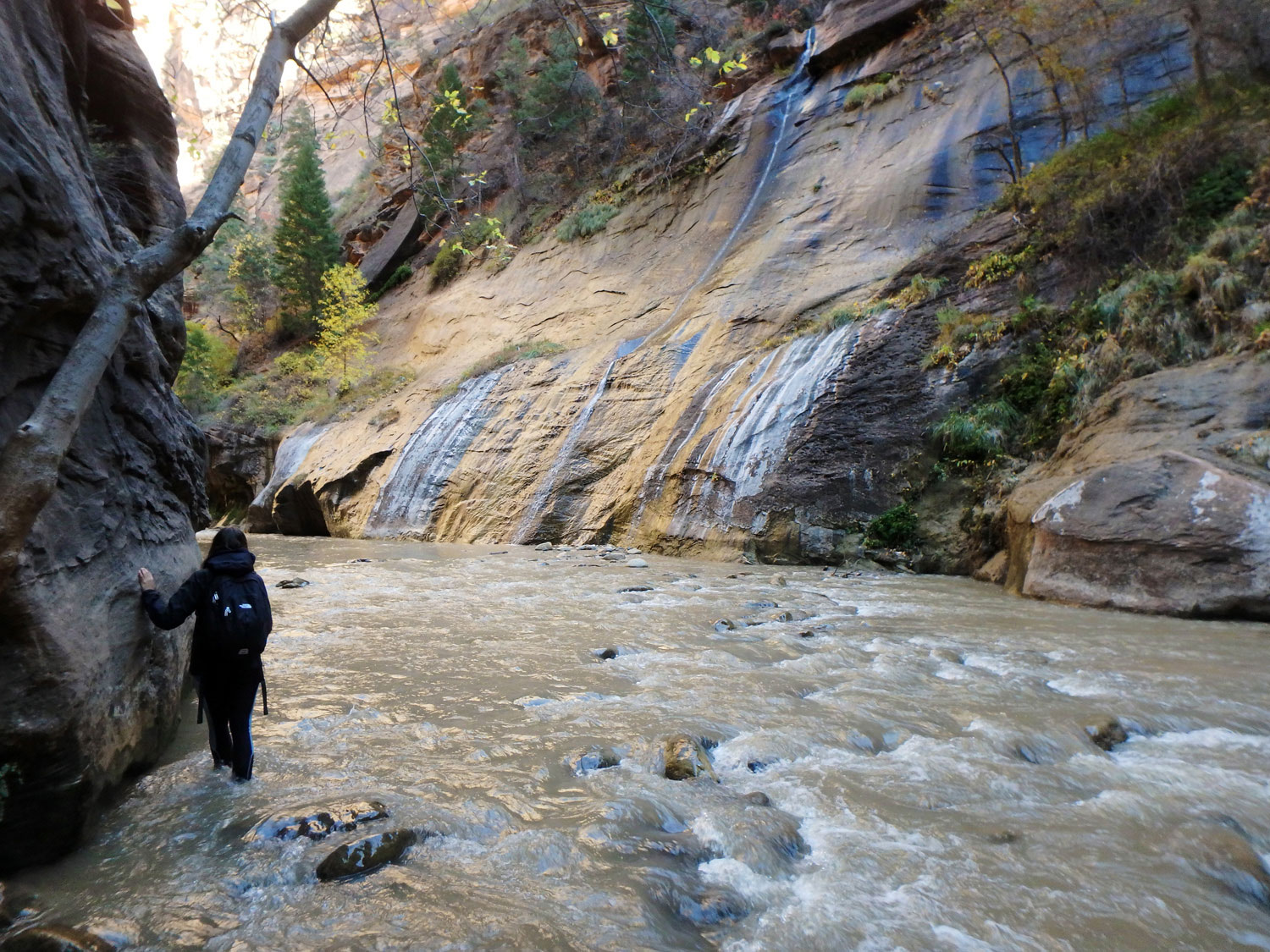 the-narrows-zion-nationalpark (2)
