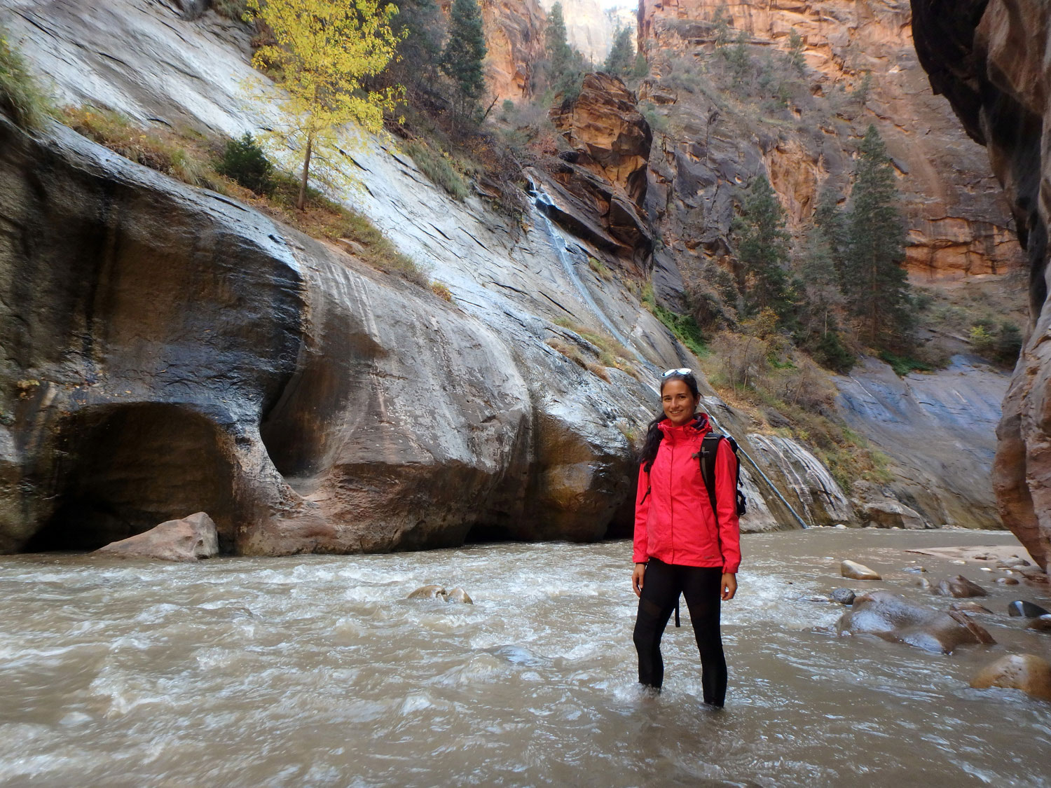 the-narrows-zion-nationalpark (3)