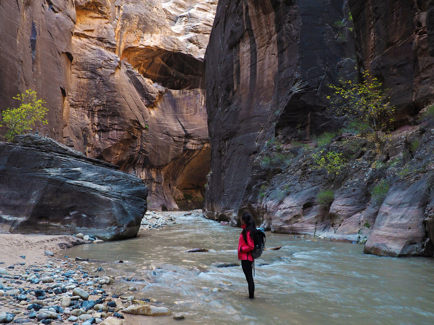 the-narrows-zion-nationalpark (4)