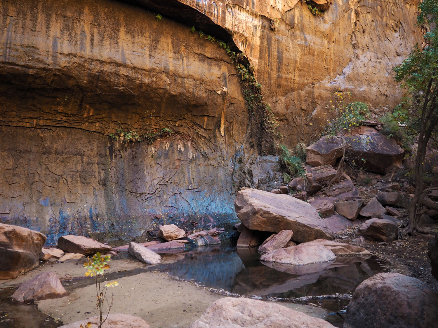 the-narrows-zion-nationalpark (8)