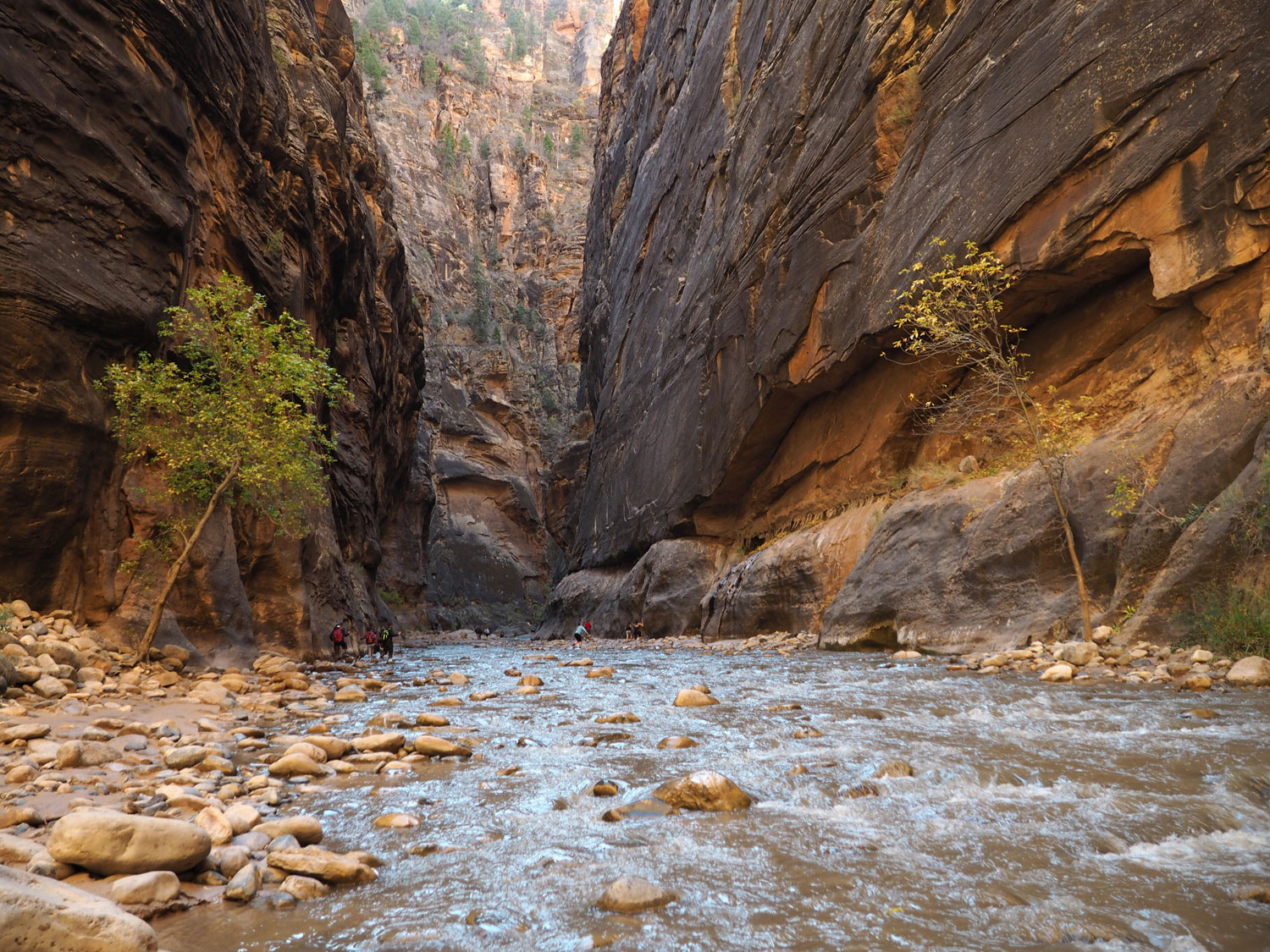 the-narrows-zion-nationalpark (9)