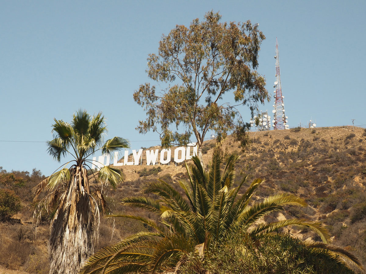 losangeles-hollywood-sign-hike-(2)