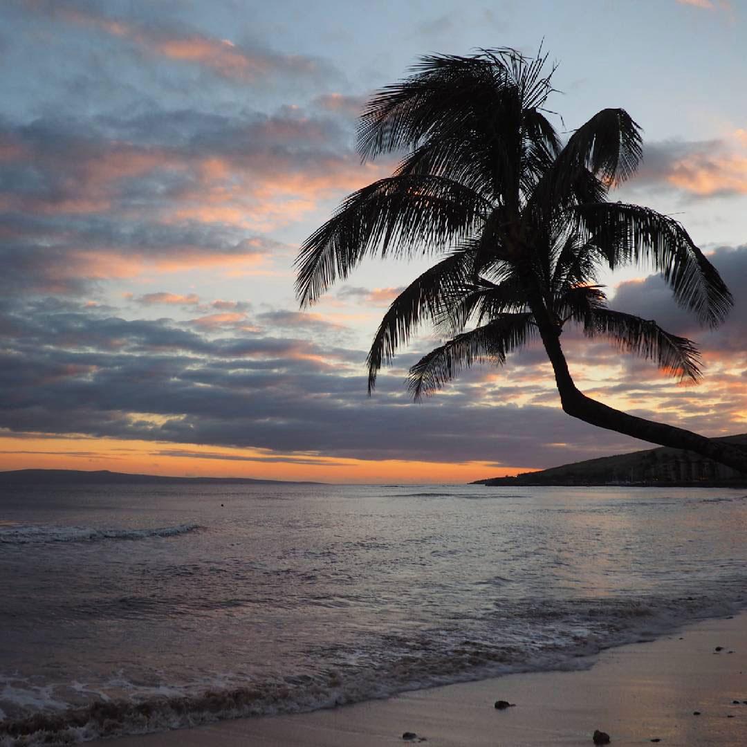maui-beach-(3)