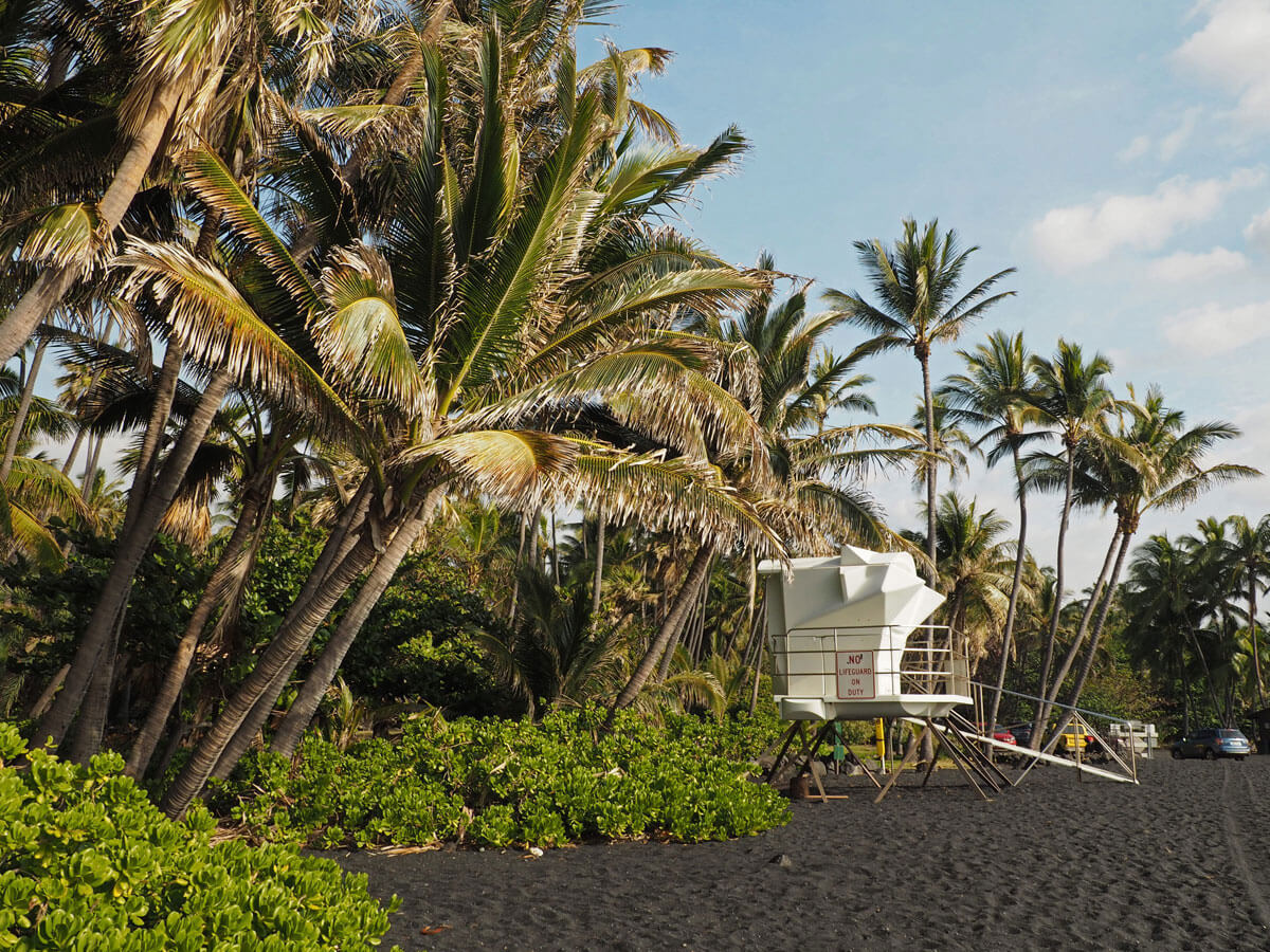 bigisland-punaluu-black-sand-beach-hawaii-(6)