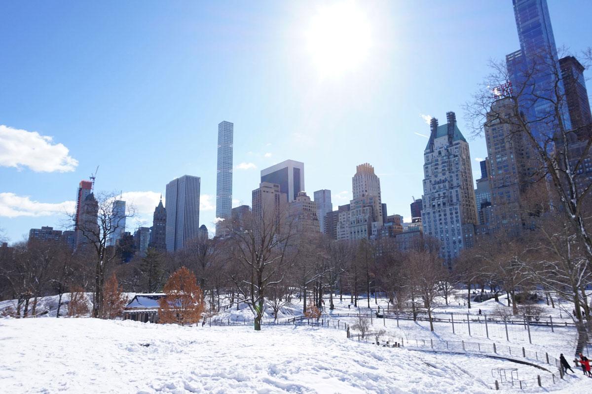 newyork-centralpark-schnee-(1)