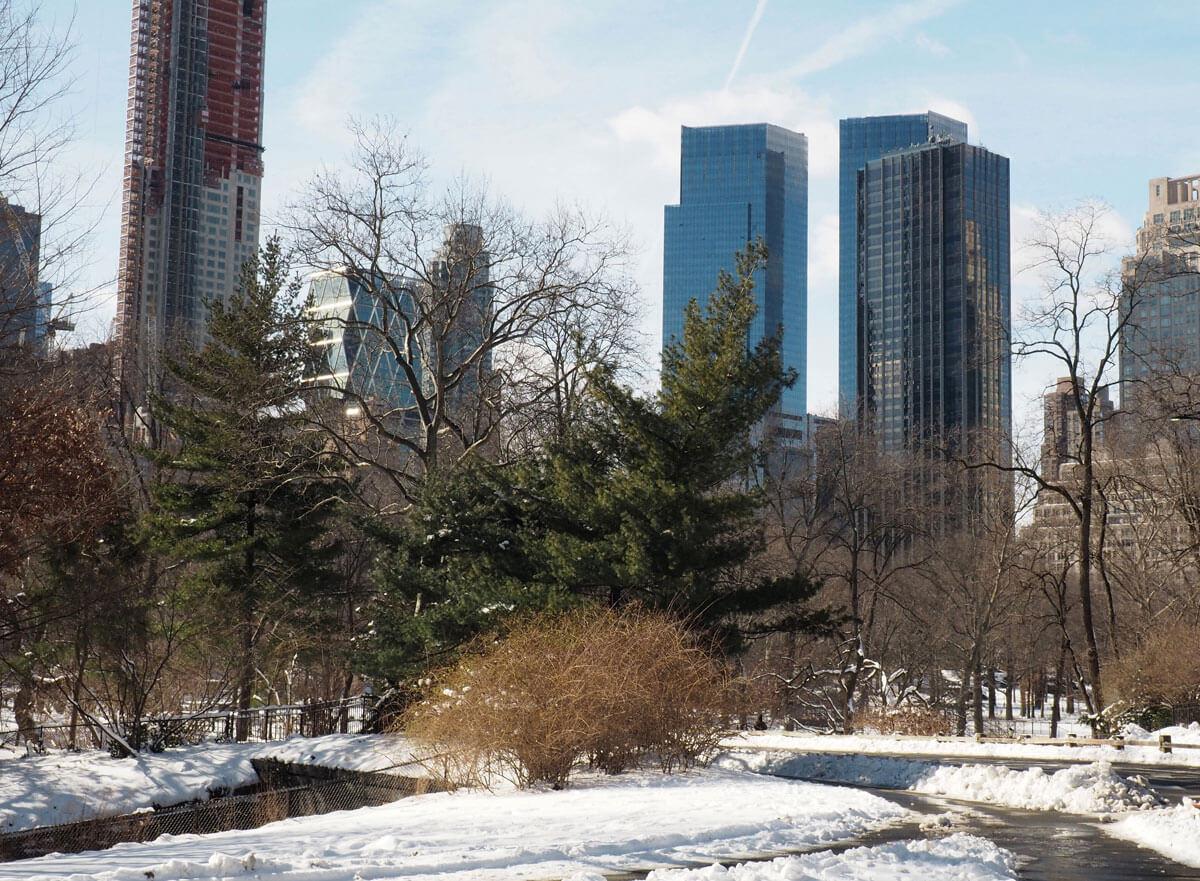 newyork-centralpark-schnee-(15)