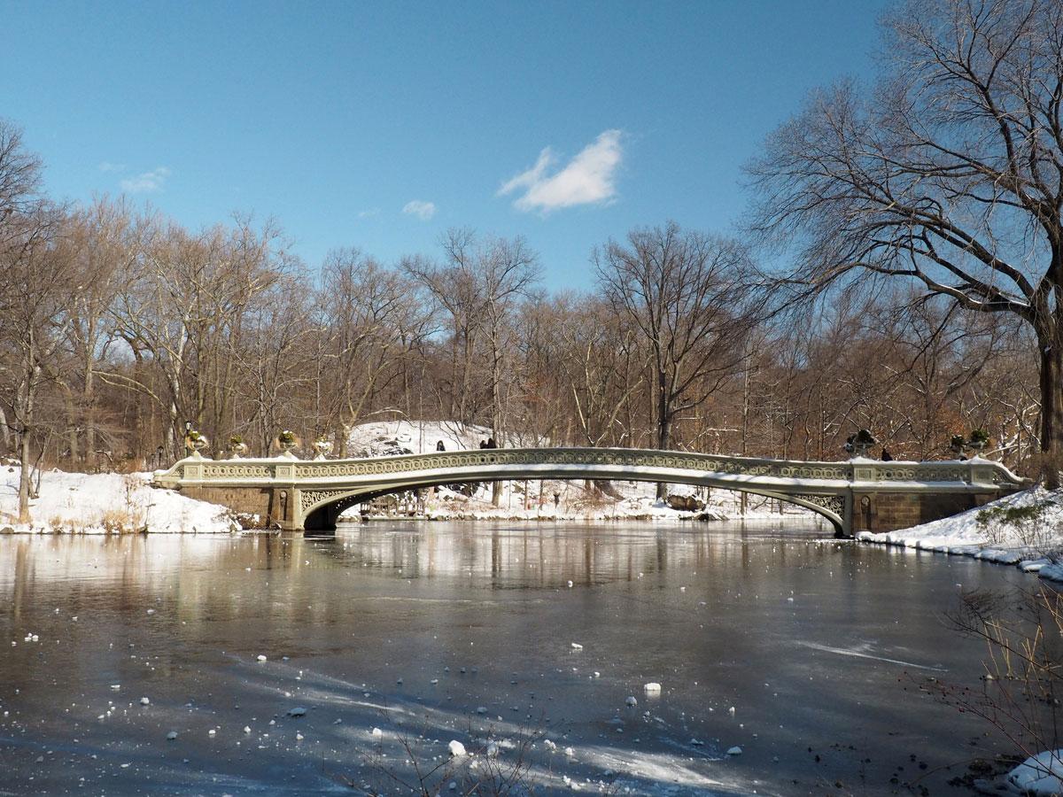newyork-centralpark-schnee-(6)