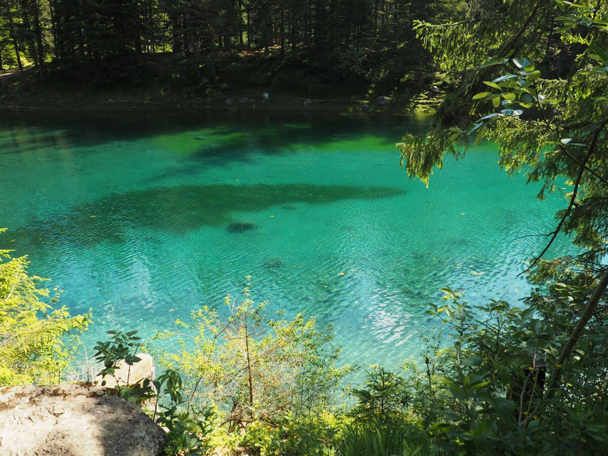 Grüner See Österreich Steiermark Tragöß