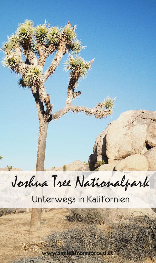 joshuatree2 - Joshua Tree Nationalpark - Felsformationen, Joshua Tree Bäume und wunderbare Natur