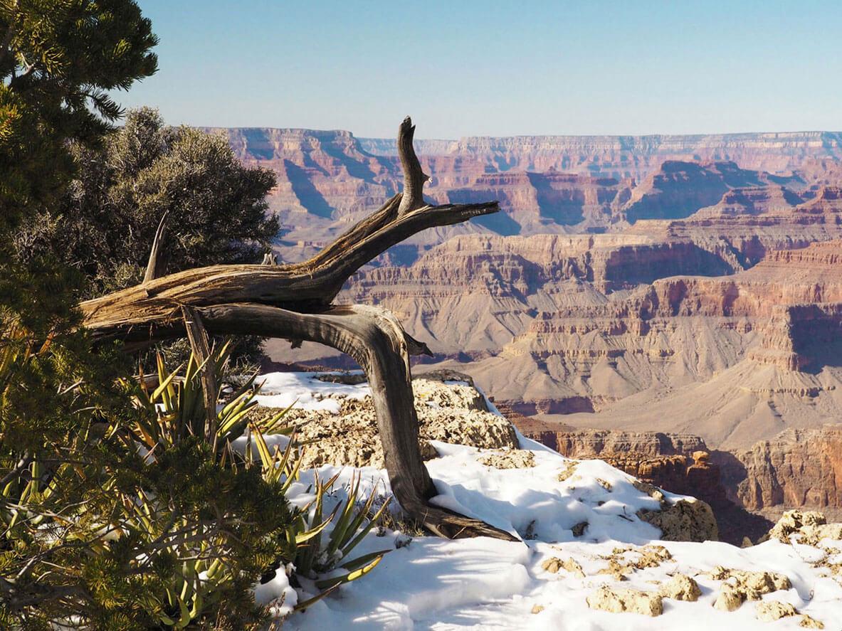 grand canyon 11 neu - Ein atemberaubendes Weltwunder - der Grand Canyon