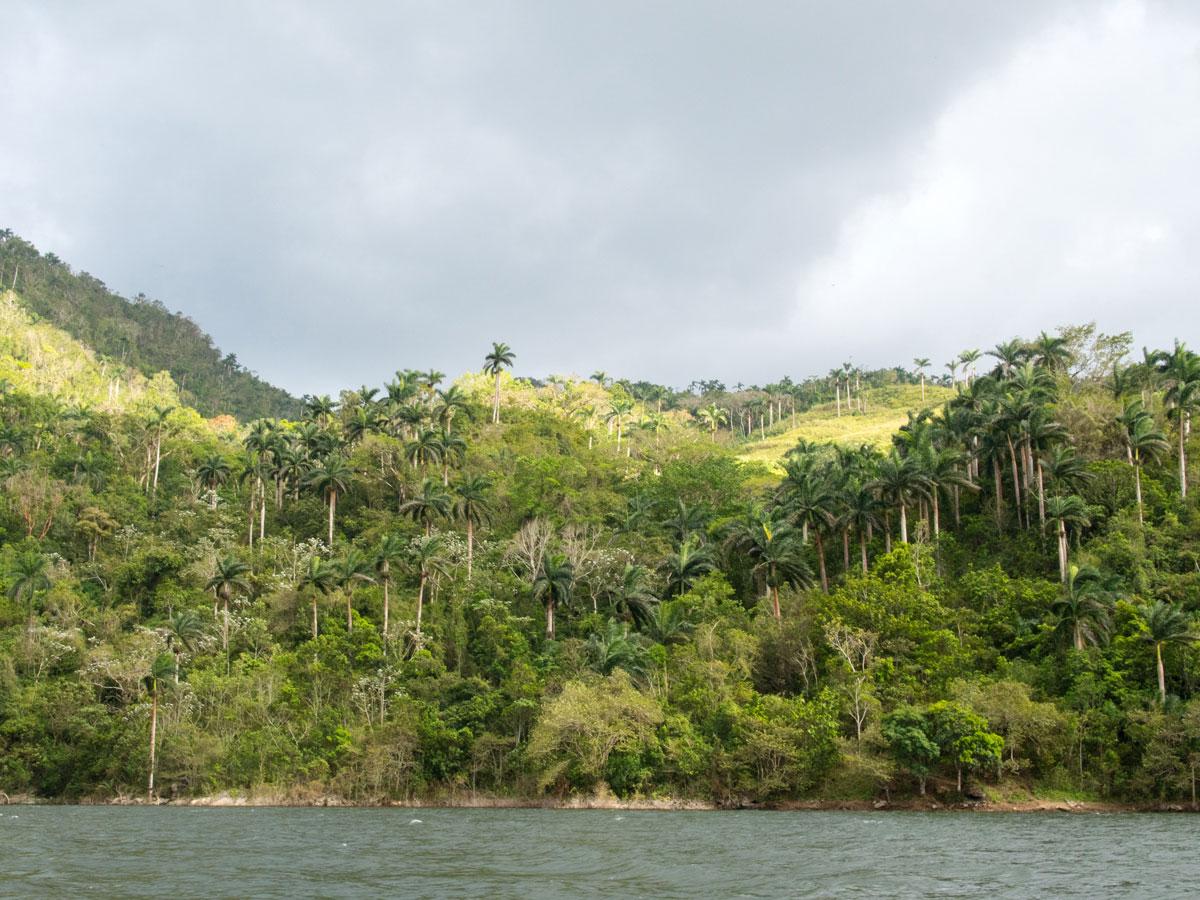 P3270320 - Ausflug zum El Nicho Wasserfall und Hanabanilla See