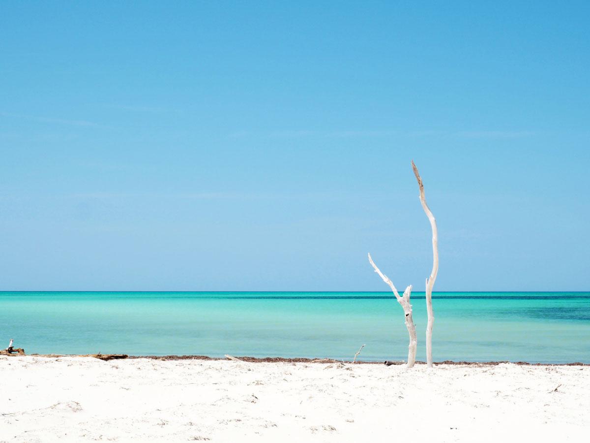 cayo levisa kuba 17 - Ausflug zum Traumstrand auf Cayo Levisa in Kuba
