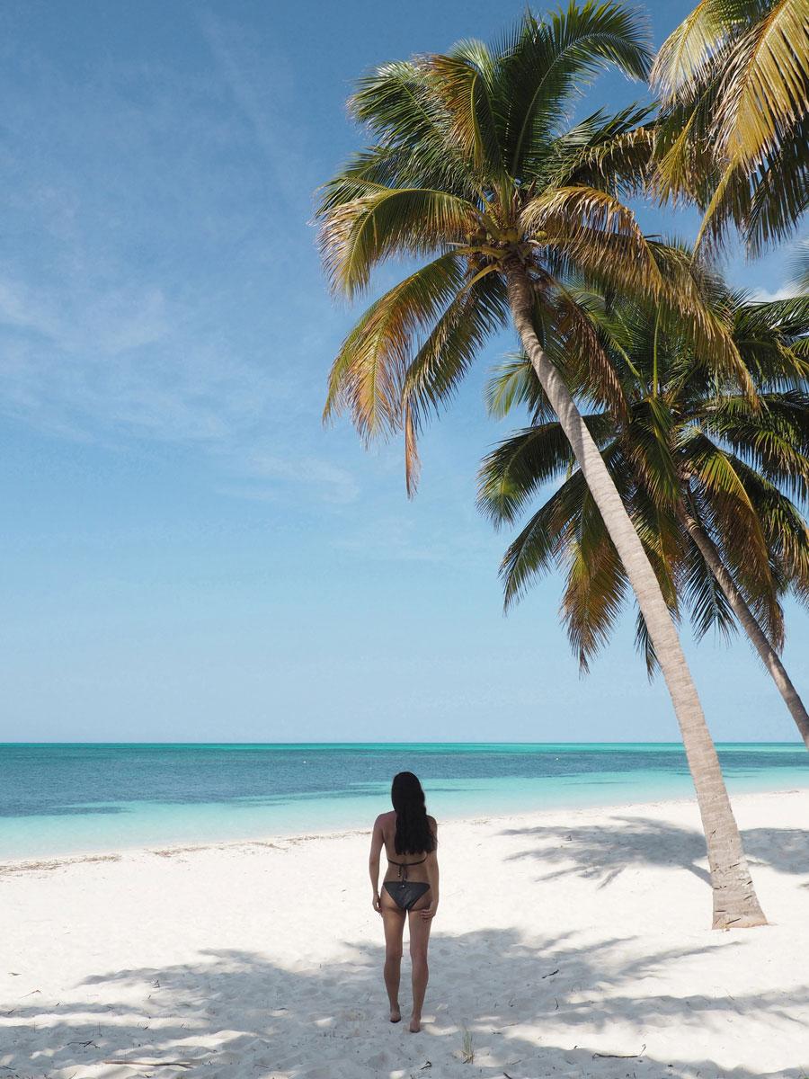 cayo levisa kuba 23 - Ausflug zum Traumstrand auf Cayo Levisa in Kuba
