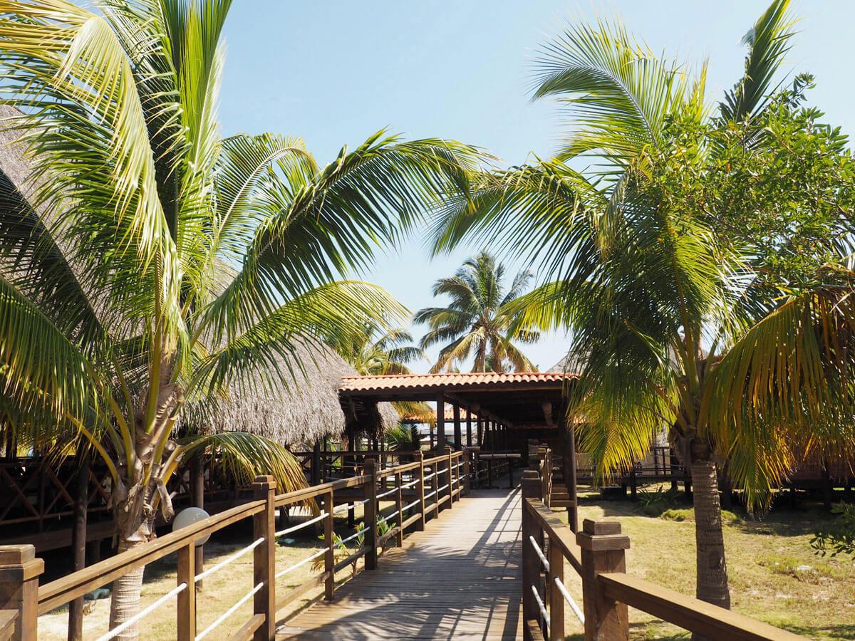 cayo levisa kuba 4 - Ausflug zum Traumstrand auf Cayo Levisa in Kuba