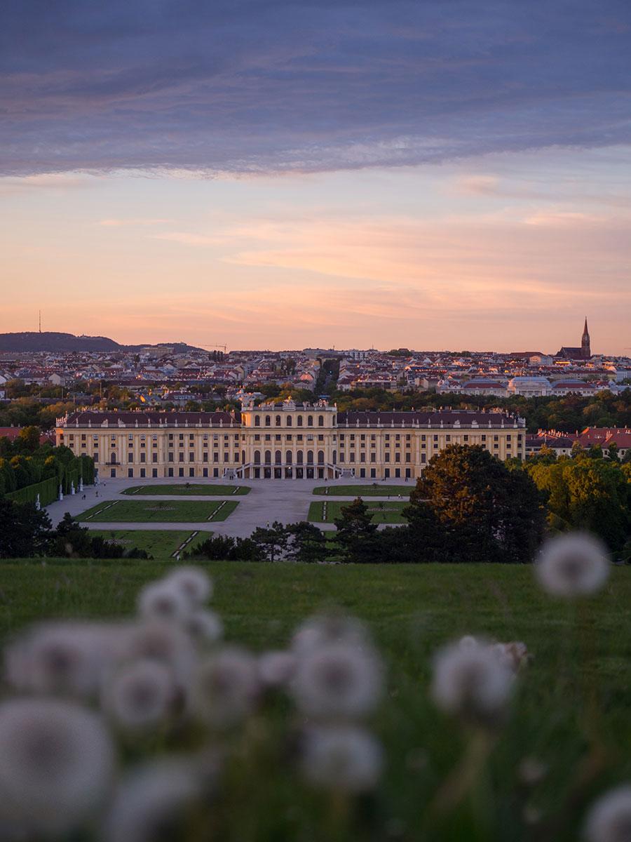 Sonnenuntergang Wien Schoenbrunn