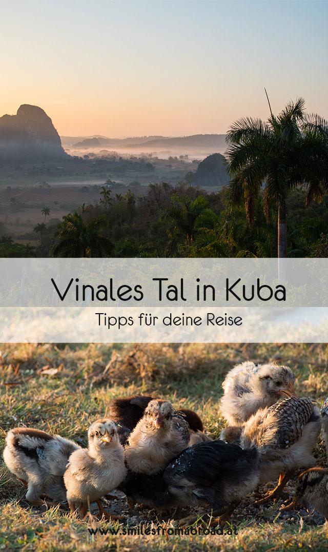 vinales pinterest3 - 6 Reisetipps für das Vinales Tal in Kuba