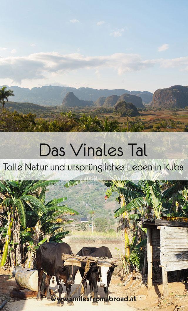 vinales pinterest4 - 6 Reisetipps für das Vinales Tal in Kuba