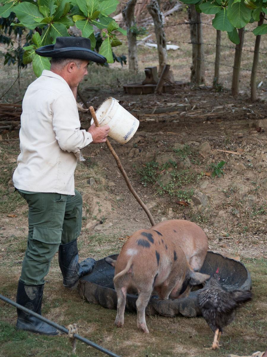 vinales tal kuba reise 17 - 6 Reisetipps für das Vinales Tal in Kuba