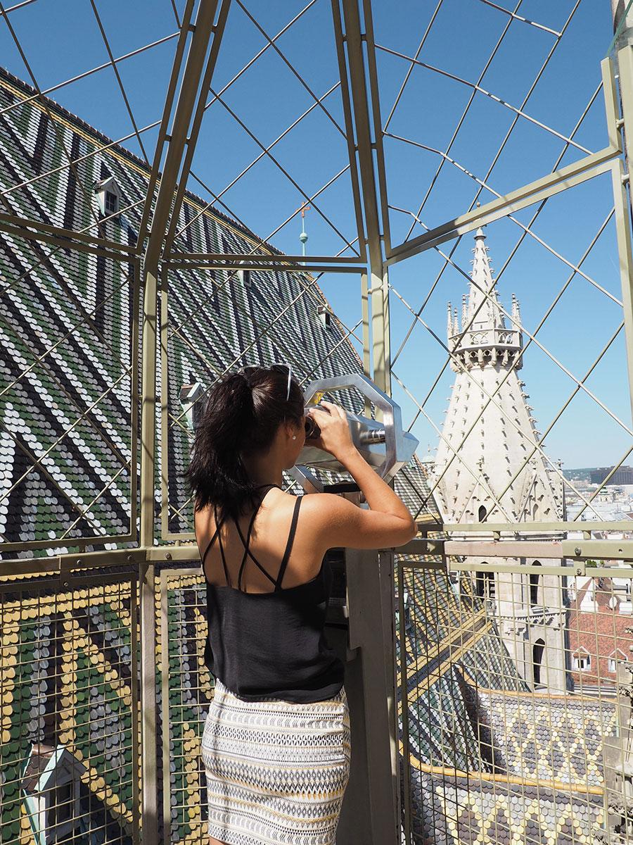 Wien Stephansdom Ausblick Turm