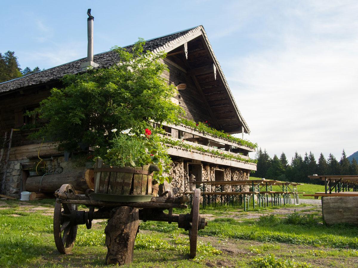 gruberalm mayerlehenhuette almuebernachtung fuschl 10 - Almsommer - Übernachtung auf der Gruberalm in der Region Fuschlsee Salzkammergut