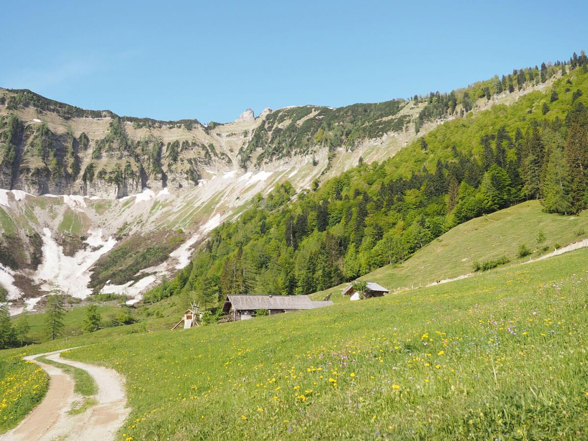gruberalm mayerlehenhuette almuebernachtung fuschl 16 - Almsommer - Übernachtung auf der Gruberalm in der Region Fuschlsee Salzkammergut