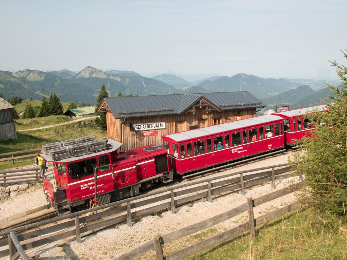 schafberg wandern 24 - Ausflug auf den Schafberg im Salzkammergut mit der Schafbergbahn