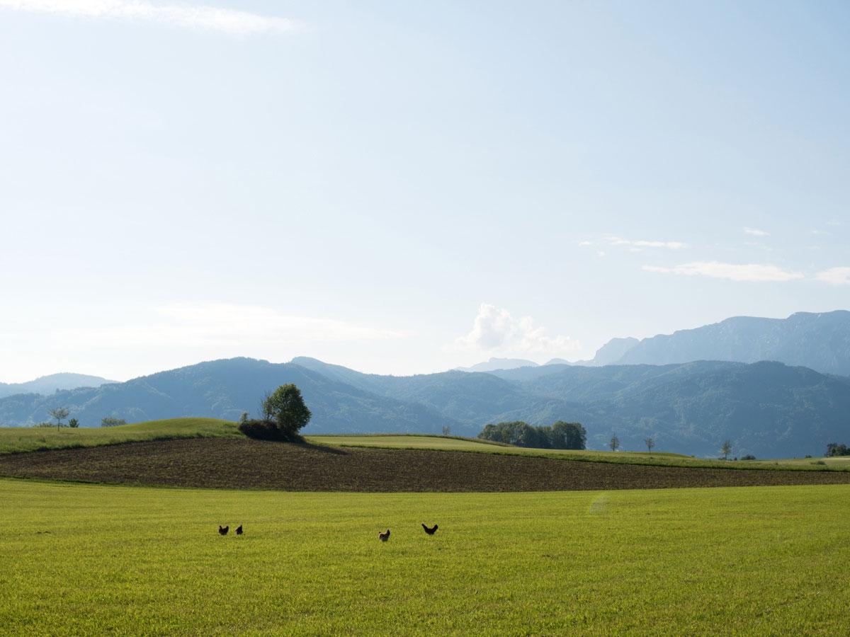 Westwanderweg Attersee