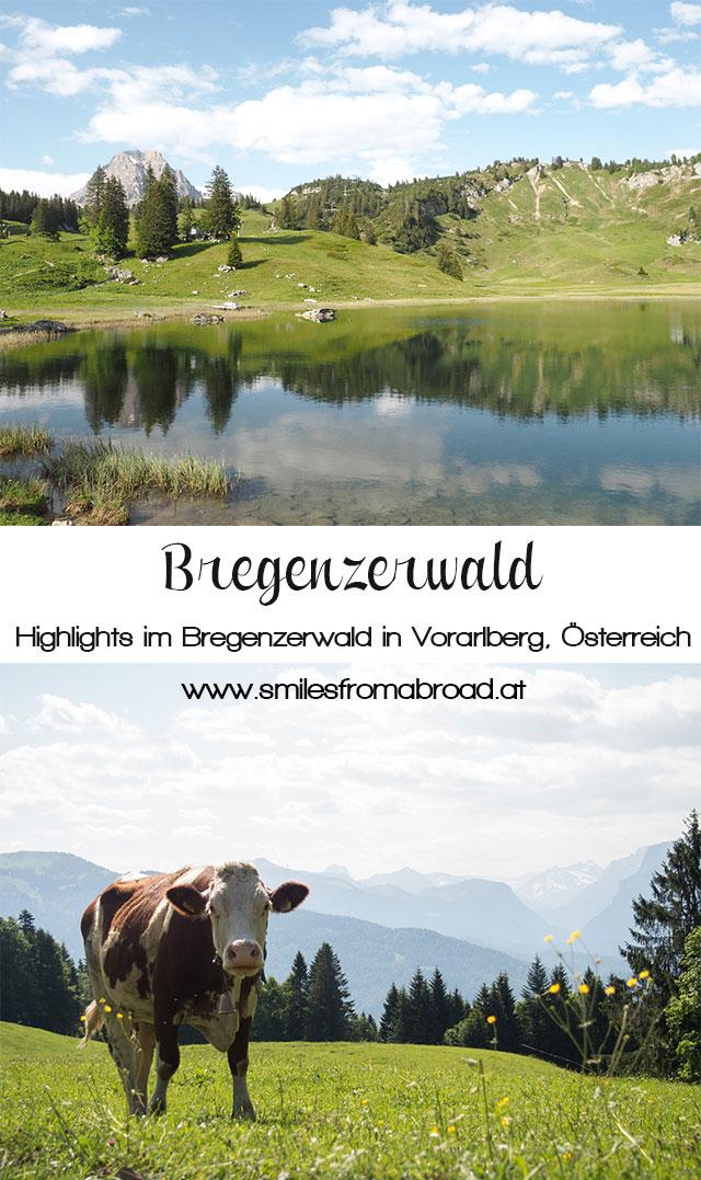 bregenzerwald pinterest2 - Die Top 5 Highlights im Bregenzerwald in Vorarlberg