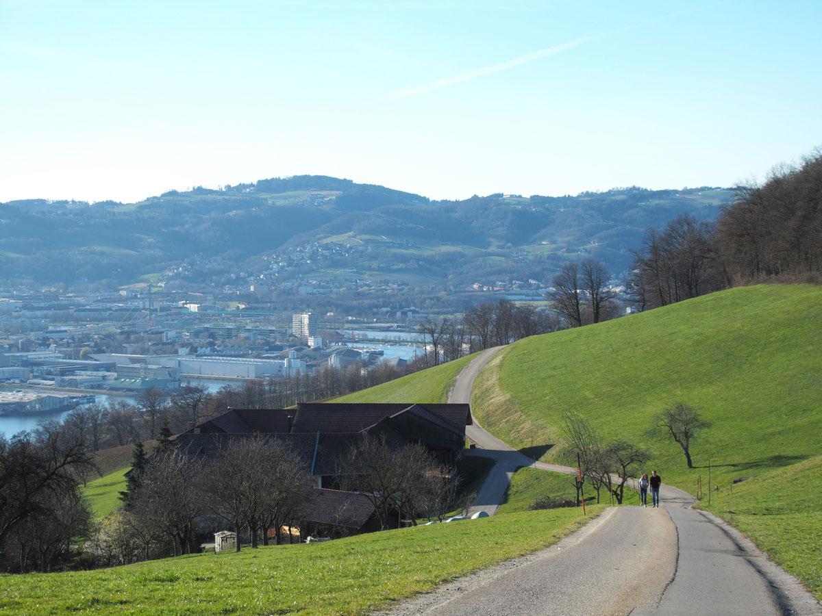 Pfenningberg Linz Wandern