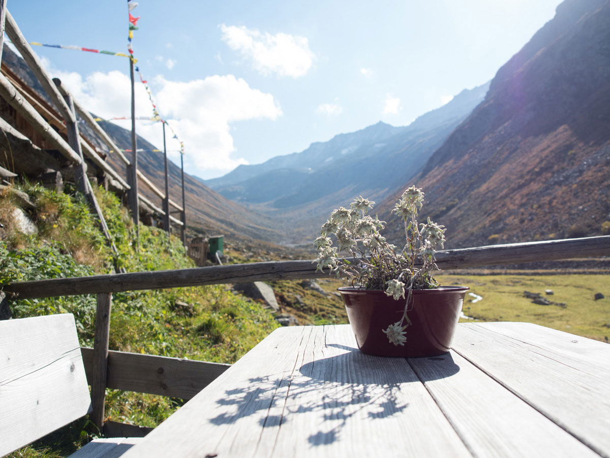 """hohenaualm klein tibet zillertal tirol 10 - Klein Tibet """"Hohenaualm"""" im Zillertal – Einfach ankommen und genießen"""