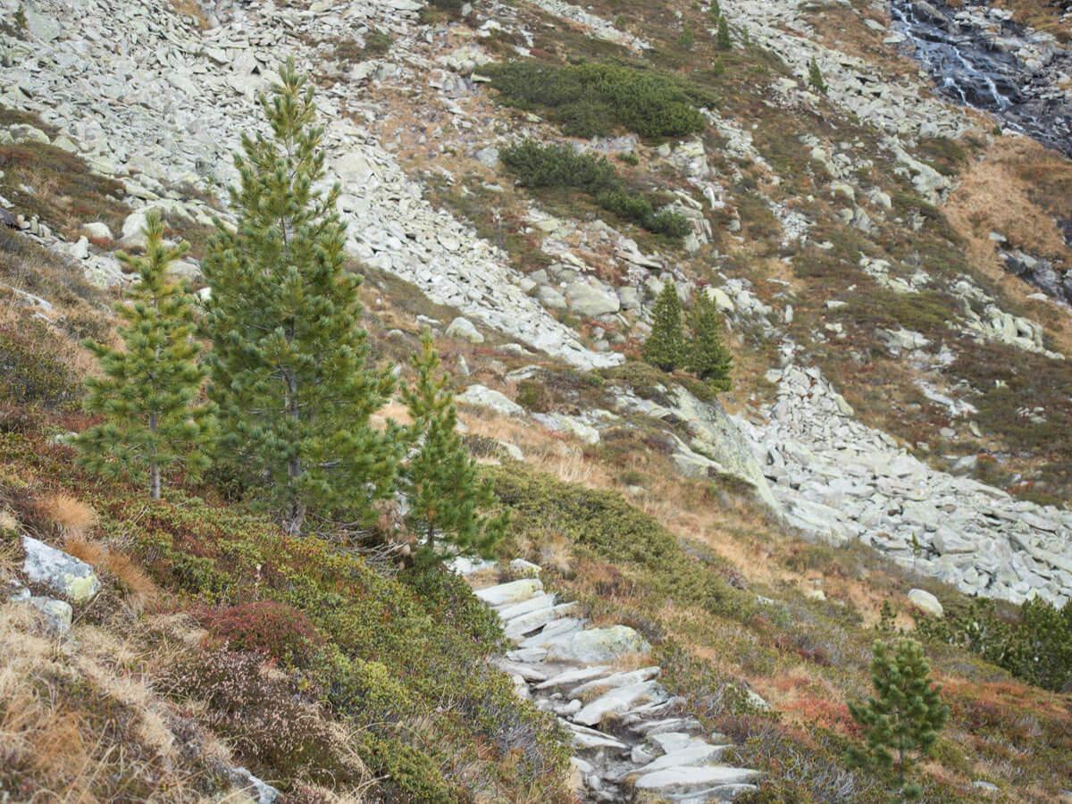 wandern olpererhuette zillertal tirol 24 - Wanderung zur Olpererhütte im Zillertal - Ein fantastischer Ausblick – Picture Diary