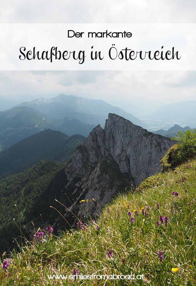 schafberg pinterest3 - Ausflug auf den Schafberg im Salzkammergut mit der Schafbergbahn