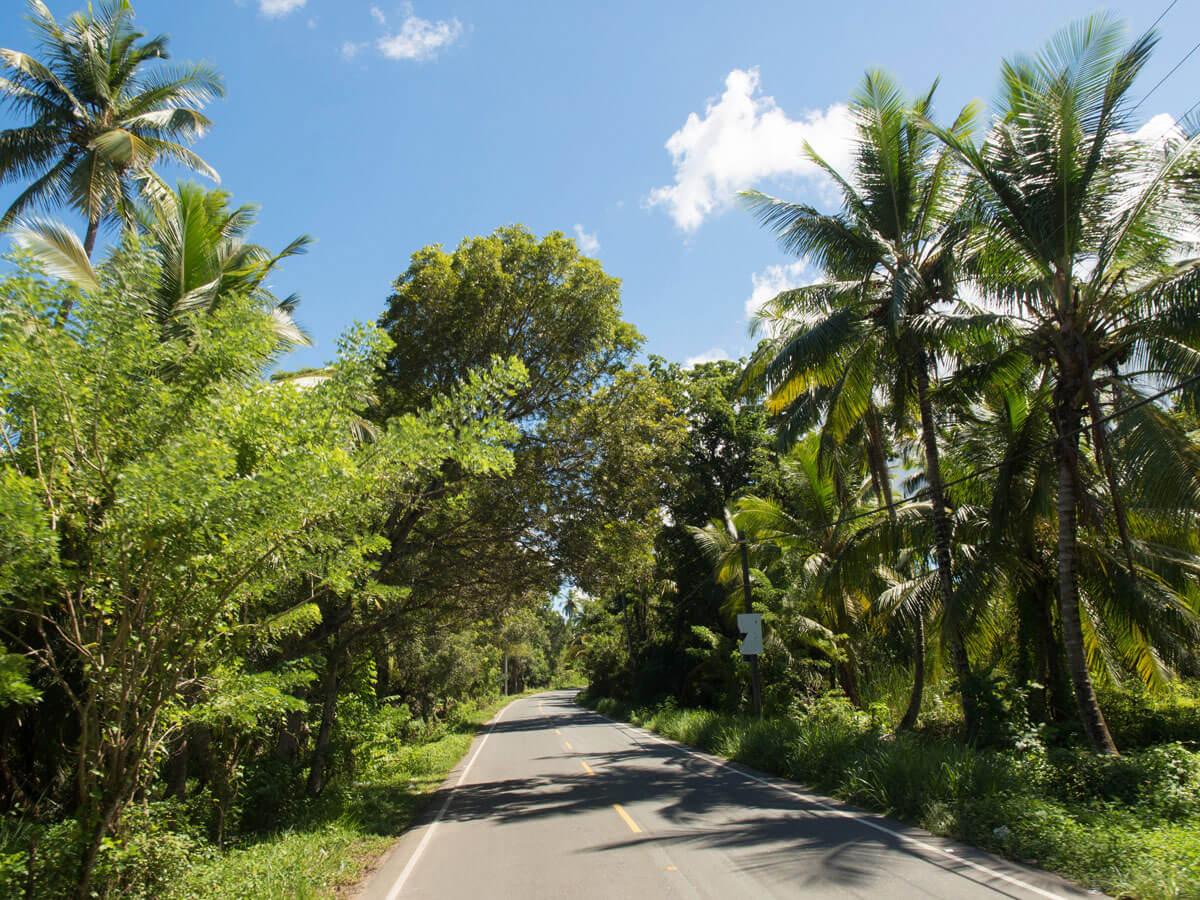 samana dominikanische republik 1 - Ausflugstipps & Sehenswertes auf der Halbinsel Samana in der dominikanischen Republik