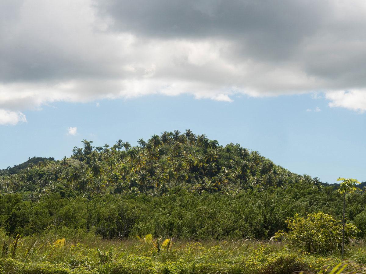 samana dominikanische republik 2 - Ausflugstipps & Sehenswertes auf der Halbinsel Samana in der dominikanischen Republik