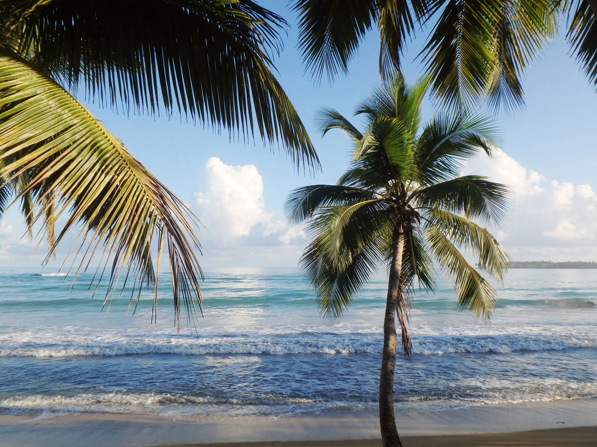 samana dominikanische republik 4 - Ausflugstipps & Sehenswertes auf der Halbinsel Samana in der dominikanischen Republik