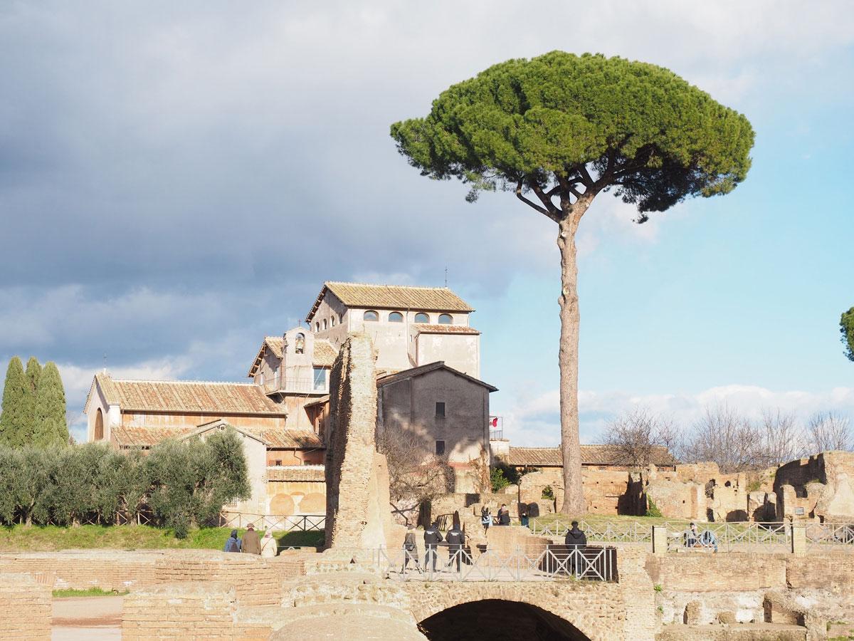 sehenswertes rom forum romanum 3 - Spaziergang durch Rom - Zu Fuß in Rom unterwegs - Sehenswertes und Reisetipps