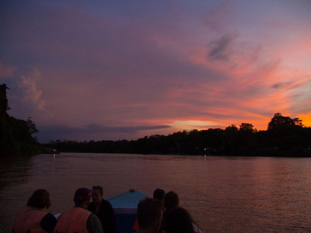 borneo kinabatangan river cruise erfahrungsbericht 1 - Warum ich keine Kinabatangan River Cruise mehr machen würde - Mein Erfahrungsbericht