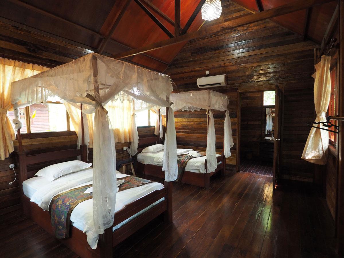 borneo kinabatangan river cruise erfahrungsbericht 2 - Warum ich keine Kinabatangan River Cruise mehr machen würde - Mein Erfahrungsbericht