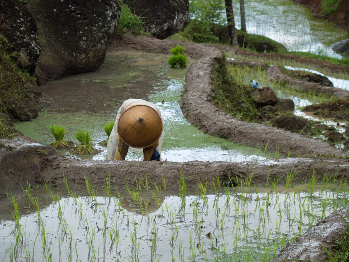 air terjun kedung kandang java indonesien 2 - Sehenswertes in und um Yogyakarta auf Java, Indonesien
