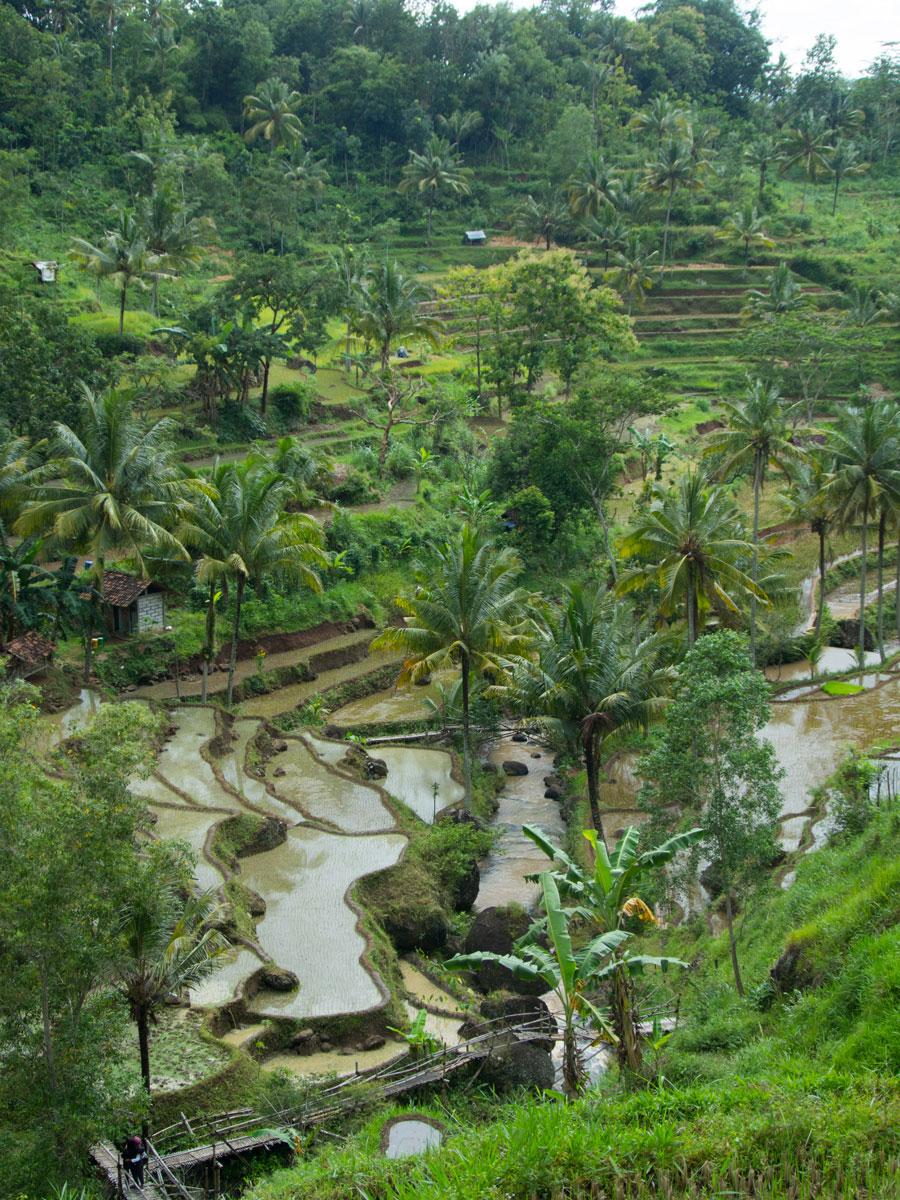 air terjun kedung kandang java indonesien 3 - Sehenswertes in und um Yogyakarta auf Java, Indonesien