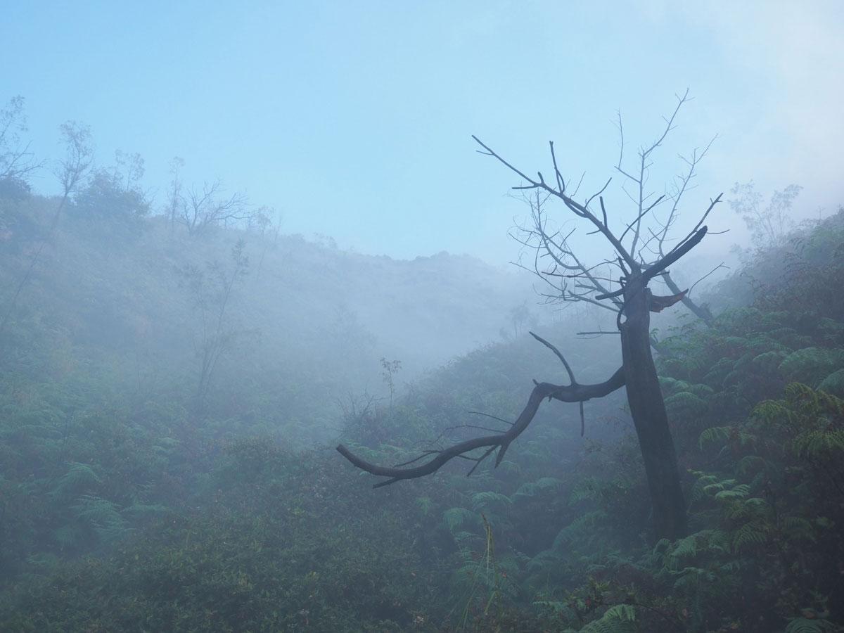 ijen java indonesien 18 - (Deutsch) Blaue Feuer und Sonnenaufgang beim Mt. Ijen auf Java, Indonesien